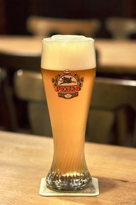 Pšeničné pivo 12 st.